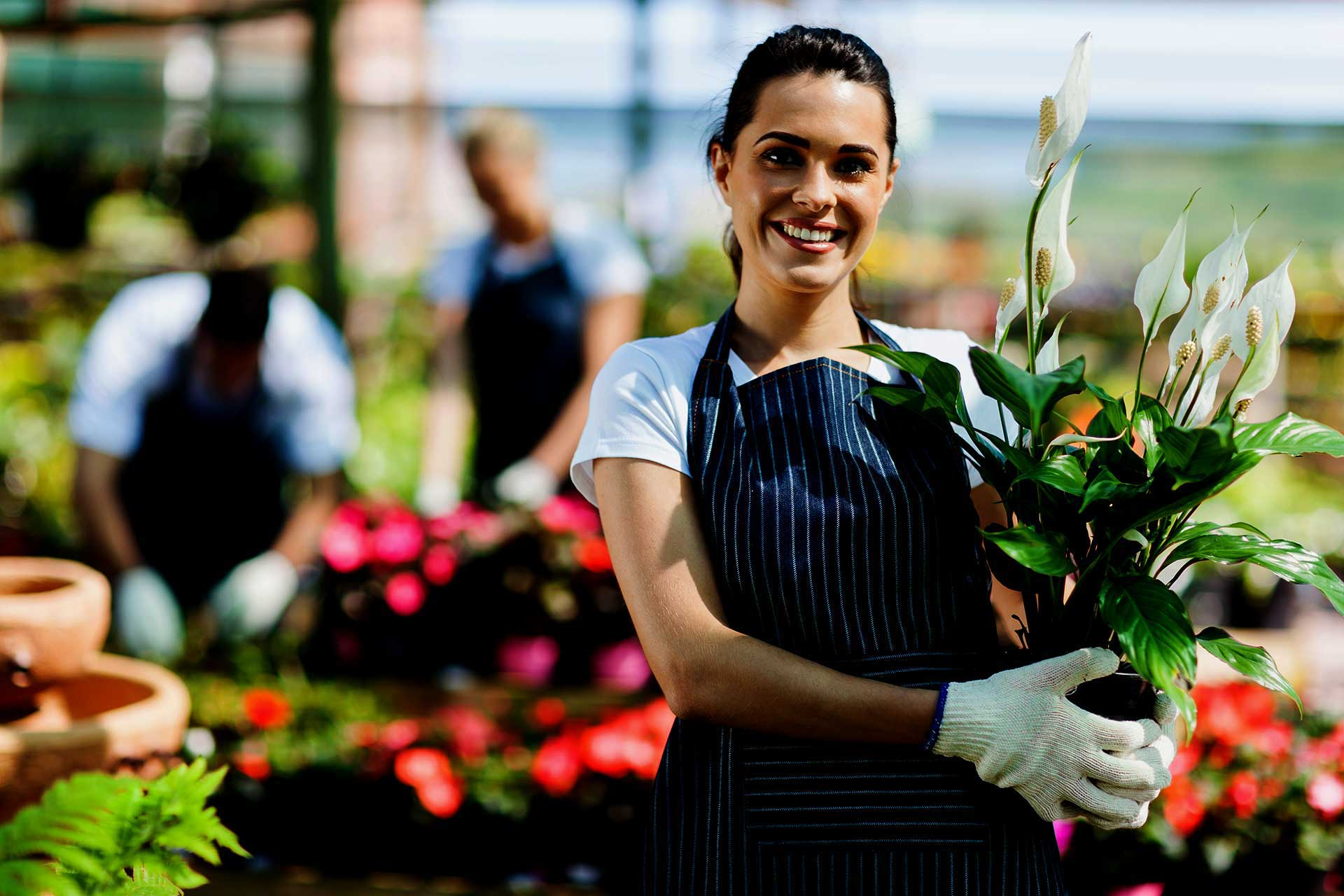happy design people customer working in a florist